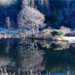 Frozen Ponds – Nice Feedback for Ty Skyline. | Tai Skyline Houses, Self-Catering in Glyncorrwg